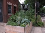 planterbox08
