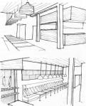 2sparrowssketch01