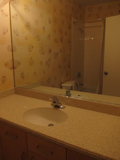 before-bathroom (yikes!)